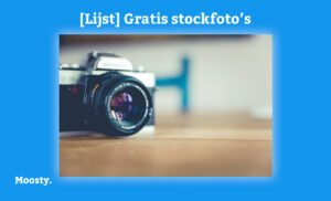 Moosty - gratis stock foto's