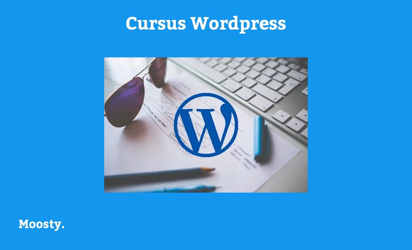 Moosty - cursus Wordpress via Soofos
