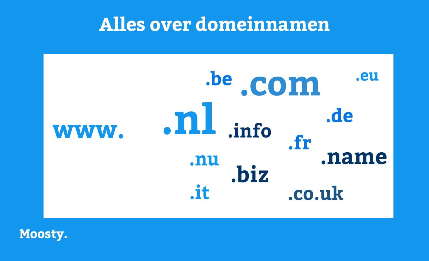 Moosty - Alles over domeinnamen